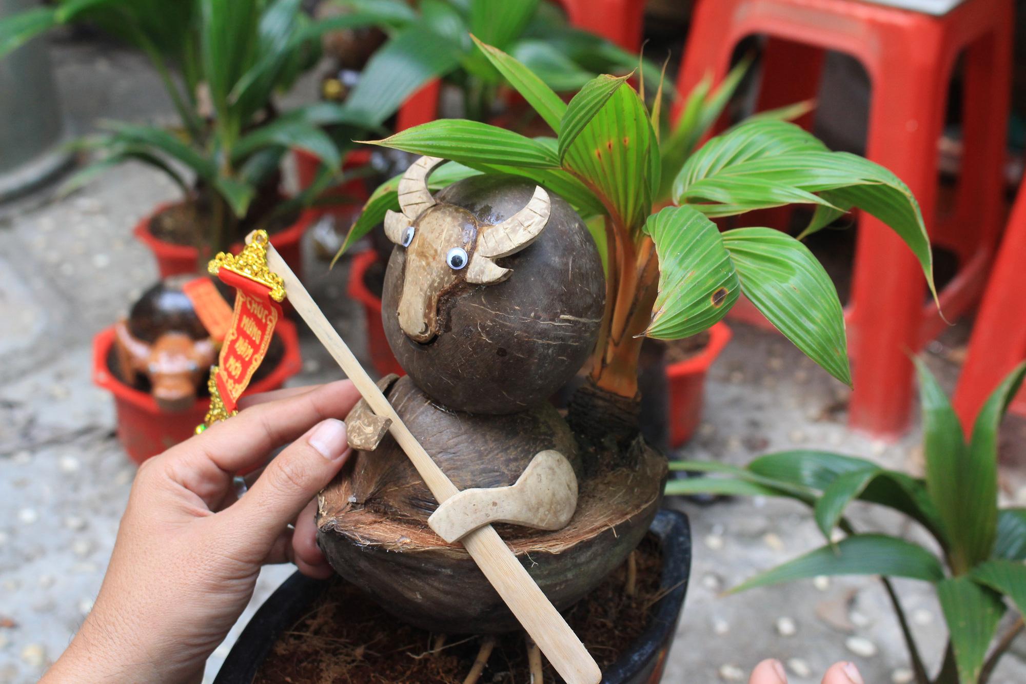Độc đáo dừa khô bonsai hình trâu chơi Tết tiền triệu ở Sài Gòn - Ảnh 8.