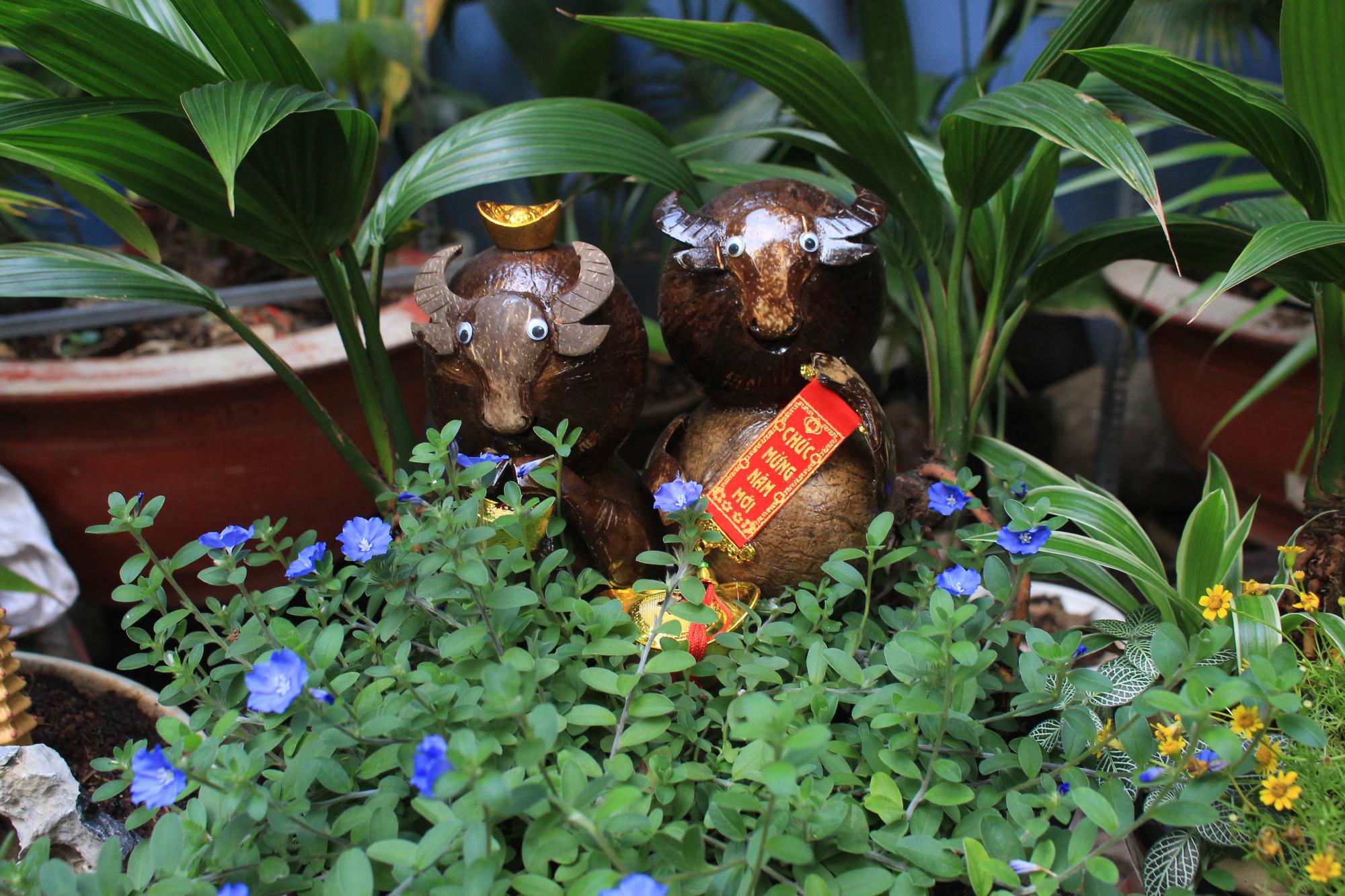 Độc đáo dừa khô bonsai hình trâu chơi Tết tiền triệu ở Sài Gòn - Ảnh 4.