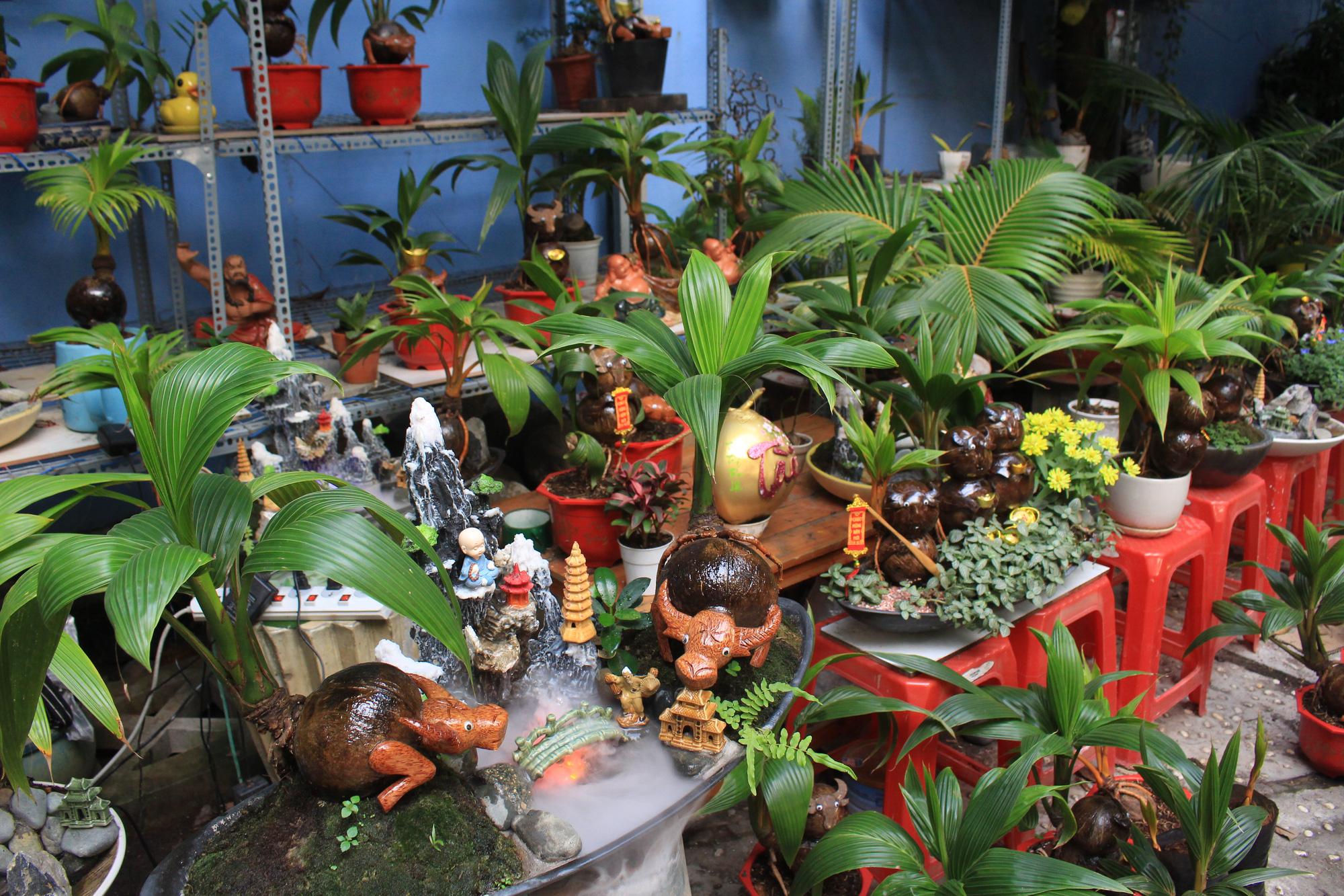 Độc đáo dừa khô bonsai hình trâu chơi Tết tiền triệu ở Sài Gòn - Ảnh 1.