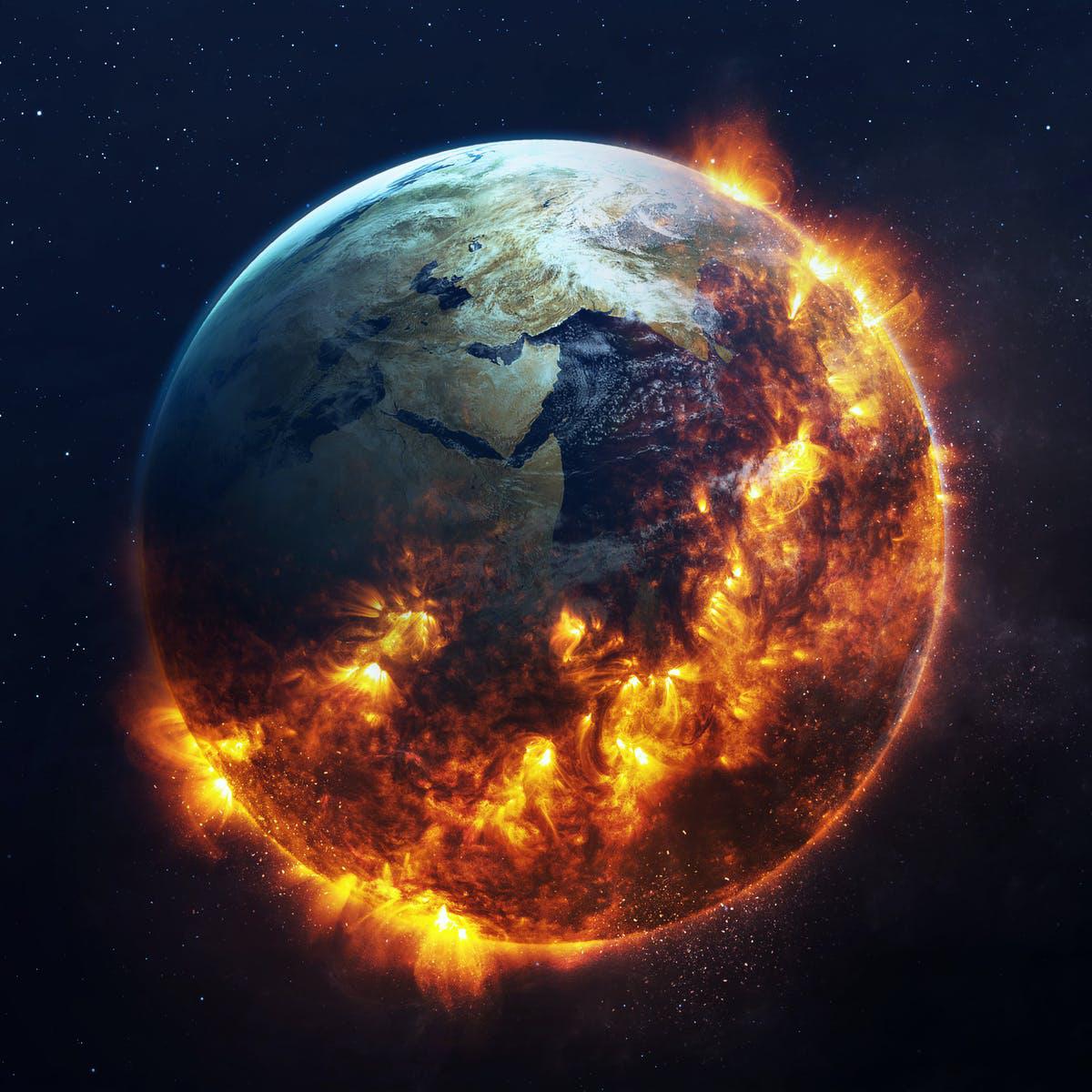 Cảnh báo Trái đất bước vào kỷ nguyên đại tuyệt chủng lần thứ sáu - Ảnh 1.