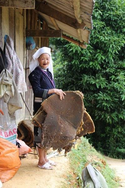 Cao Bằng: Không kém phần nguy hiểm khi dân vô rừng lấy tổ ong khoái khổng lồ to như cái mâm để làm gì? - Ảnh 2.