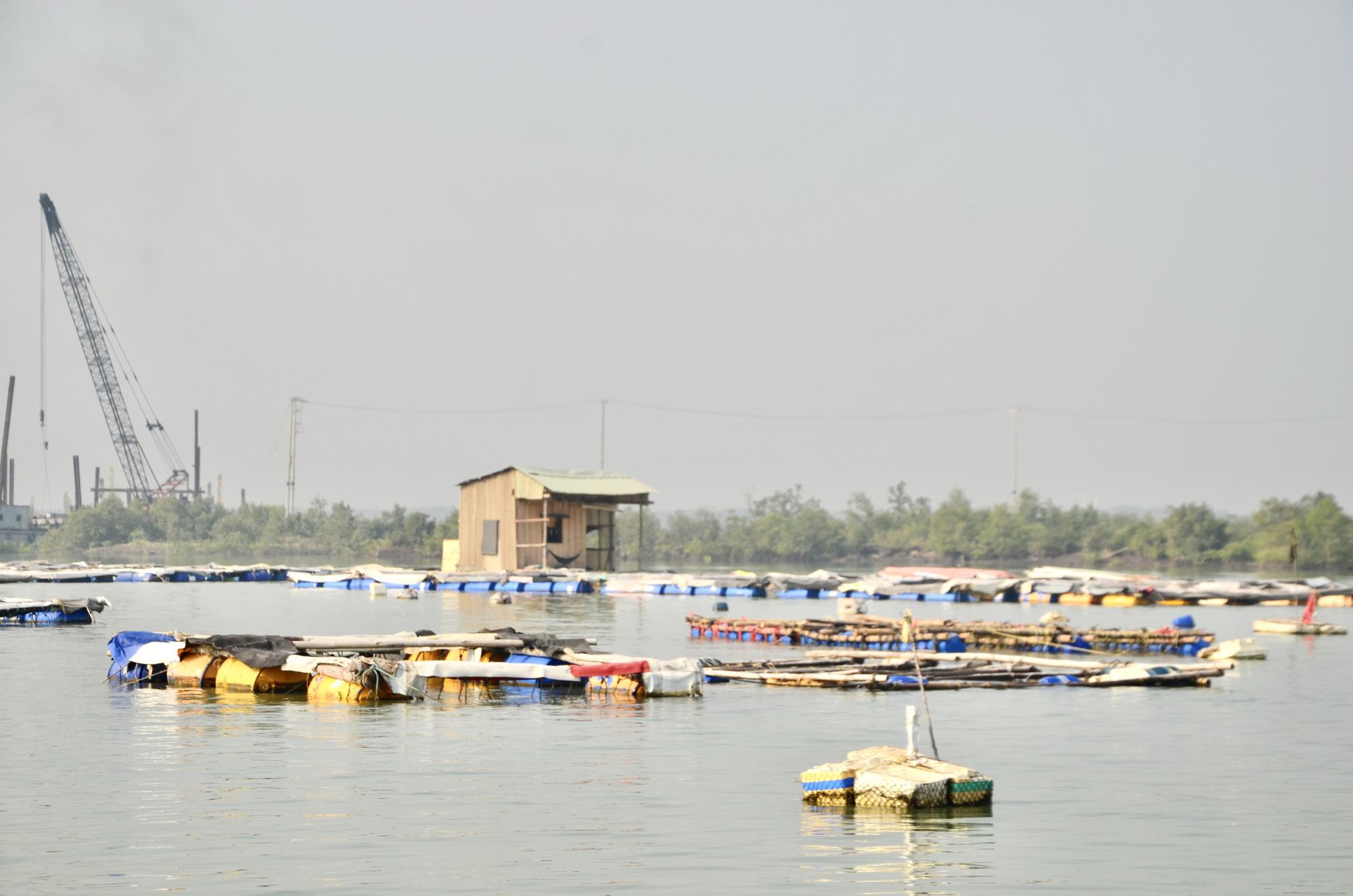 Bà Rịa-Vũng Tàu: Đáng mừng, dân đã bắt được vô số cá tôm trên sông Thị Vải, kiếm 500.000 đồng mỗi ngày - Ảnh 1.
