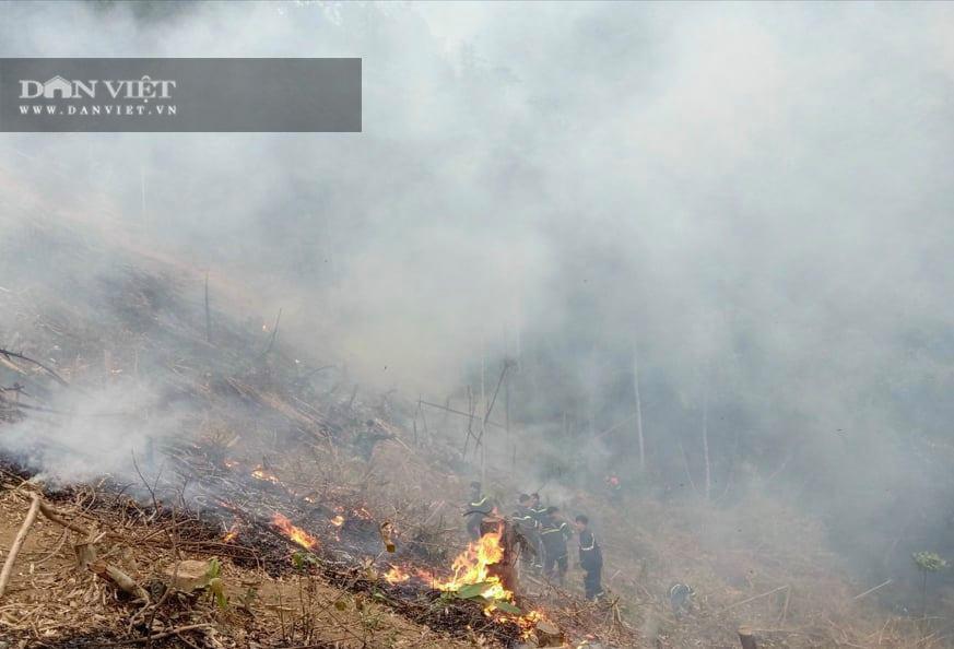 Bắc Kạn: Xử lý thực bì, suýt cháy lan sang cả rừng phòng hộ - Ảnh 3.