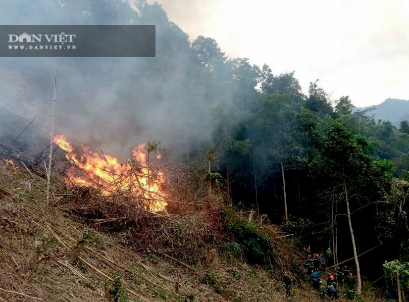 Bắc Kạn: Xử lý thực bì, suýt cháy lan sang cả rừng phòng hộ - Ảnh 2.