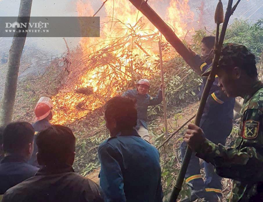 Bắc Kạn: Xử lý thực bì, suýt cháy lan sang cả rừng phòng hộ - Ảnh 1.