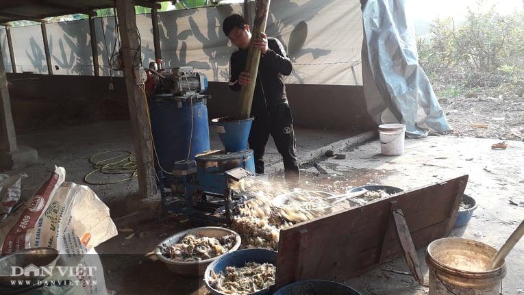 Thái Nguyên: Nuôi con ăn đủ các loại rau cỏ thanh niên trẻ lãi mỗi tháng 1 triệu đồng/con - Ảnh 3.