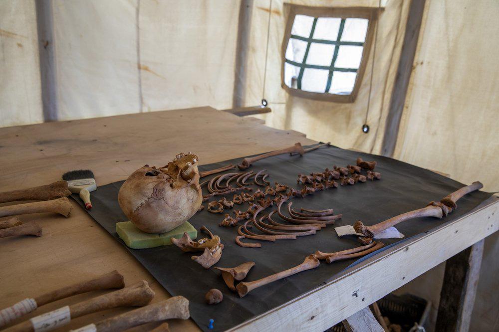 Cận cảnh xác ướp hơn 3.000 năm tuổi ở Ai Cập - Ảnh 8.