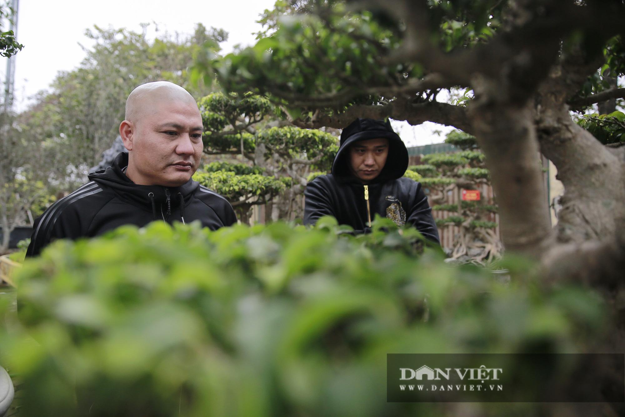 Mãn nhãn với những chậu bonsai quý hiếm tại Festival Sinh vật cảnh Hà Nội - Ảnh 9.