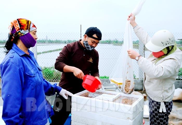 Hải Dương: Con đặc sản nổi tiếng của xã này đã xuất khẩu chính ngạch, dân ai cũng mừng - Ảnh 1.