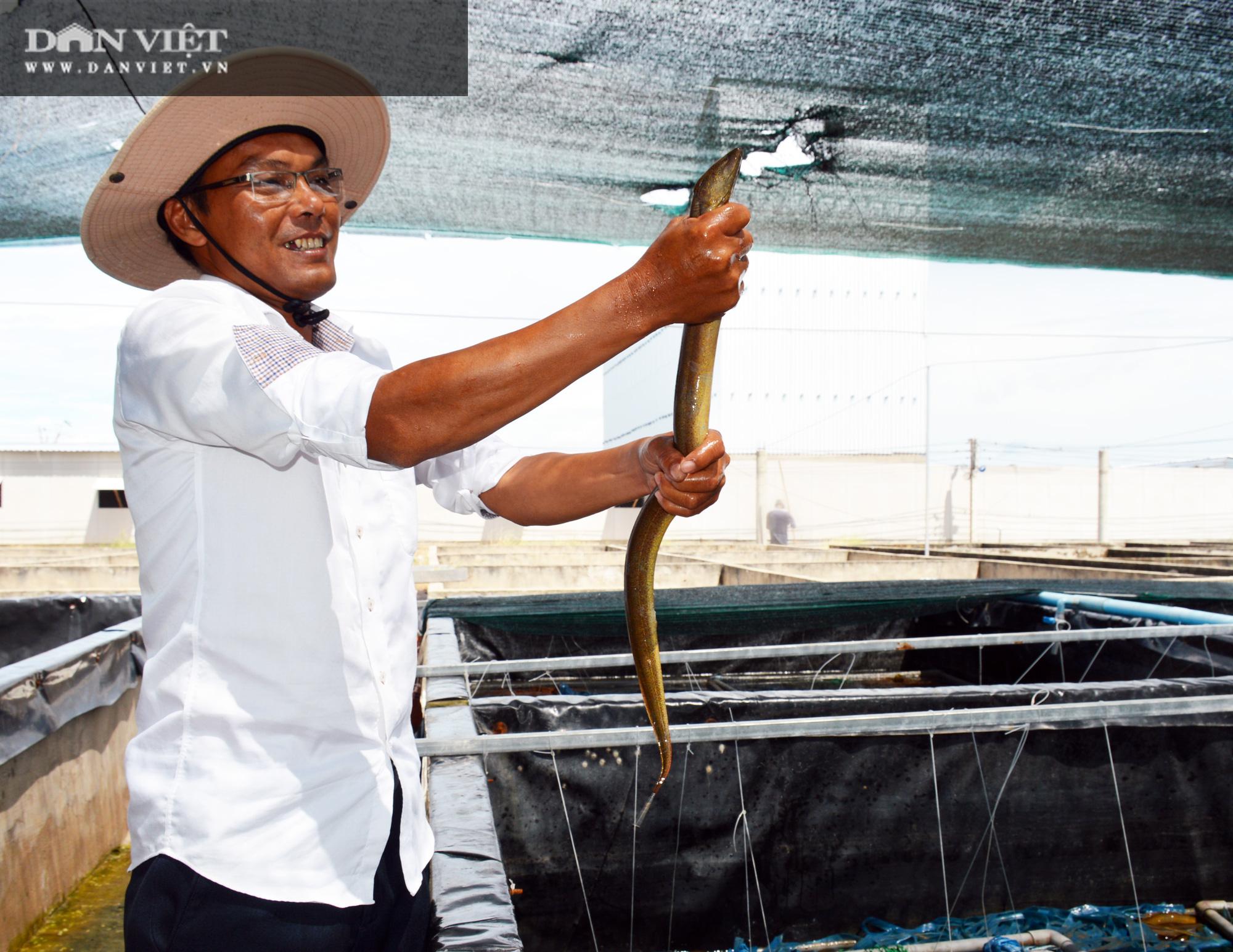Chàng tỷ phú nông dân nuôi lươn không bùn công nghệ cao, thu lãi 40-50%/vụ - Ảnh 6.