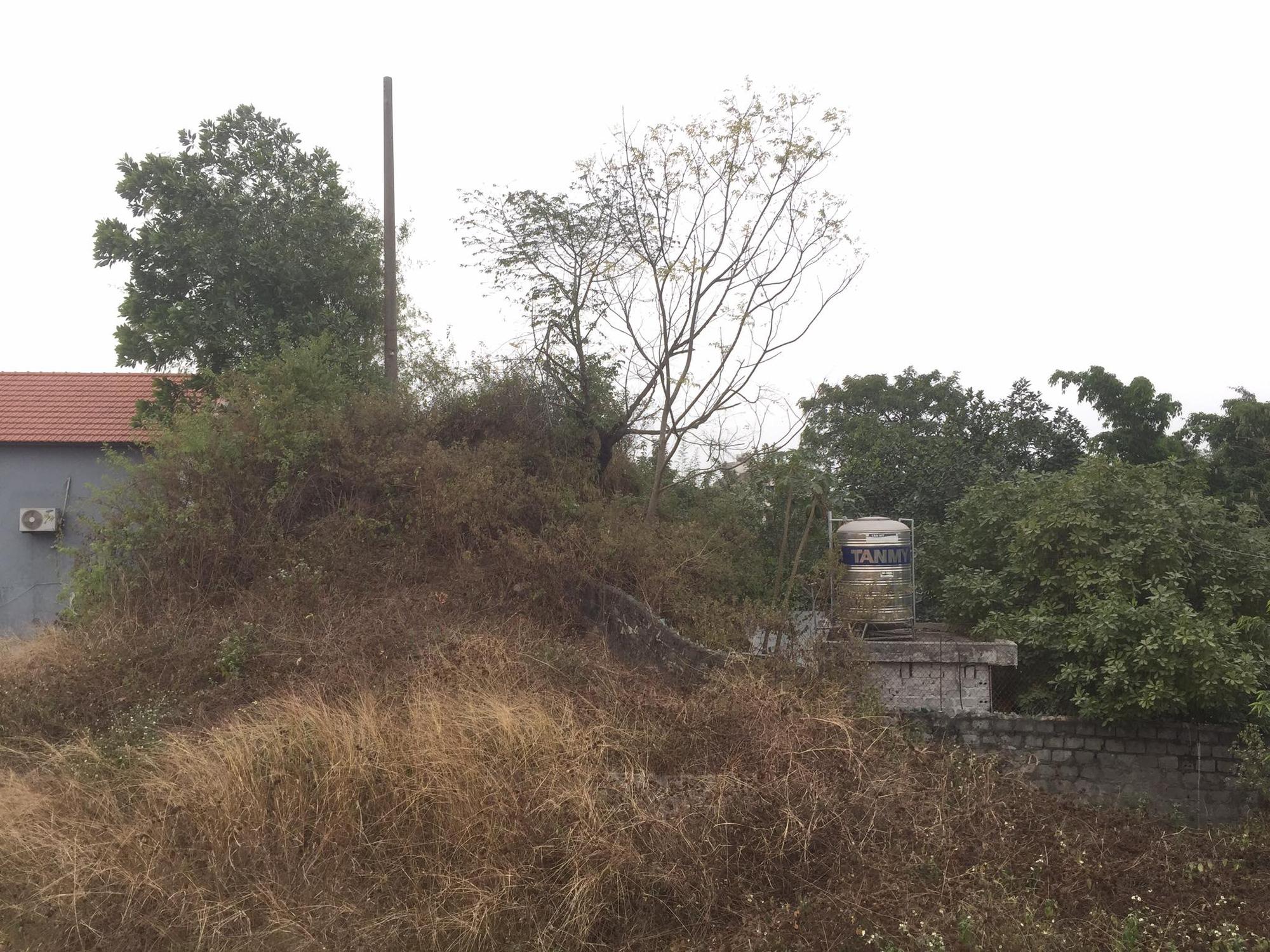 """Ninh Bình: """"Hô biến"""" diện tích đất đồi dưới hành lang lưới điện cấp trái quy định 4 sổ đỏ cho dân - Ảnh 3."""