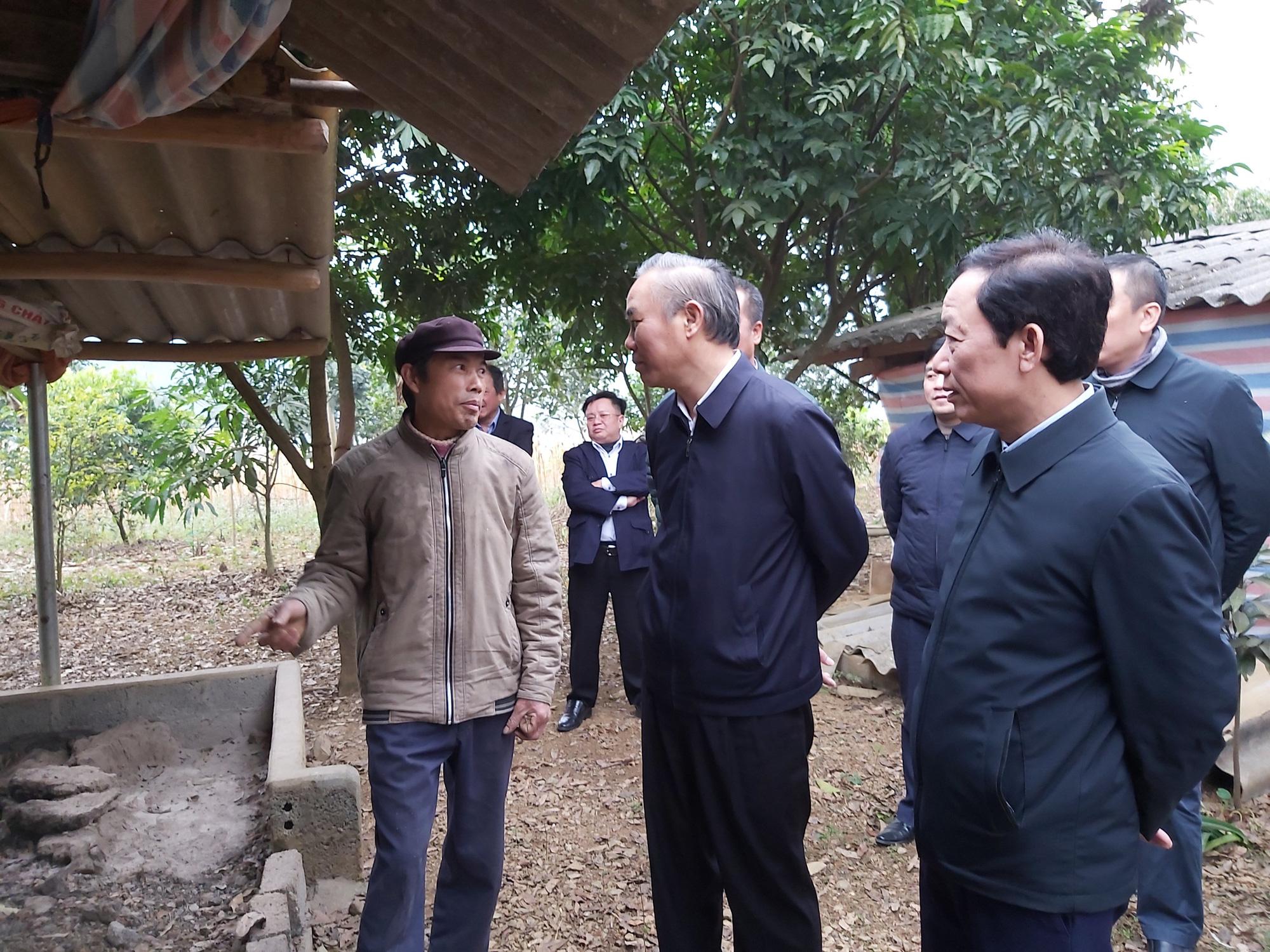 Chủ động phòng, chống đói rét cho đàn gia súc, Hà Giang giảm thiểu tối đa thiệt hại - Ảnh 3.