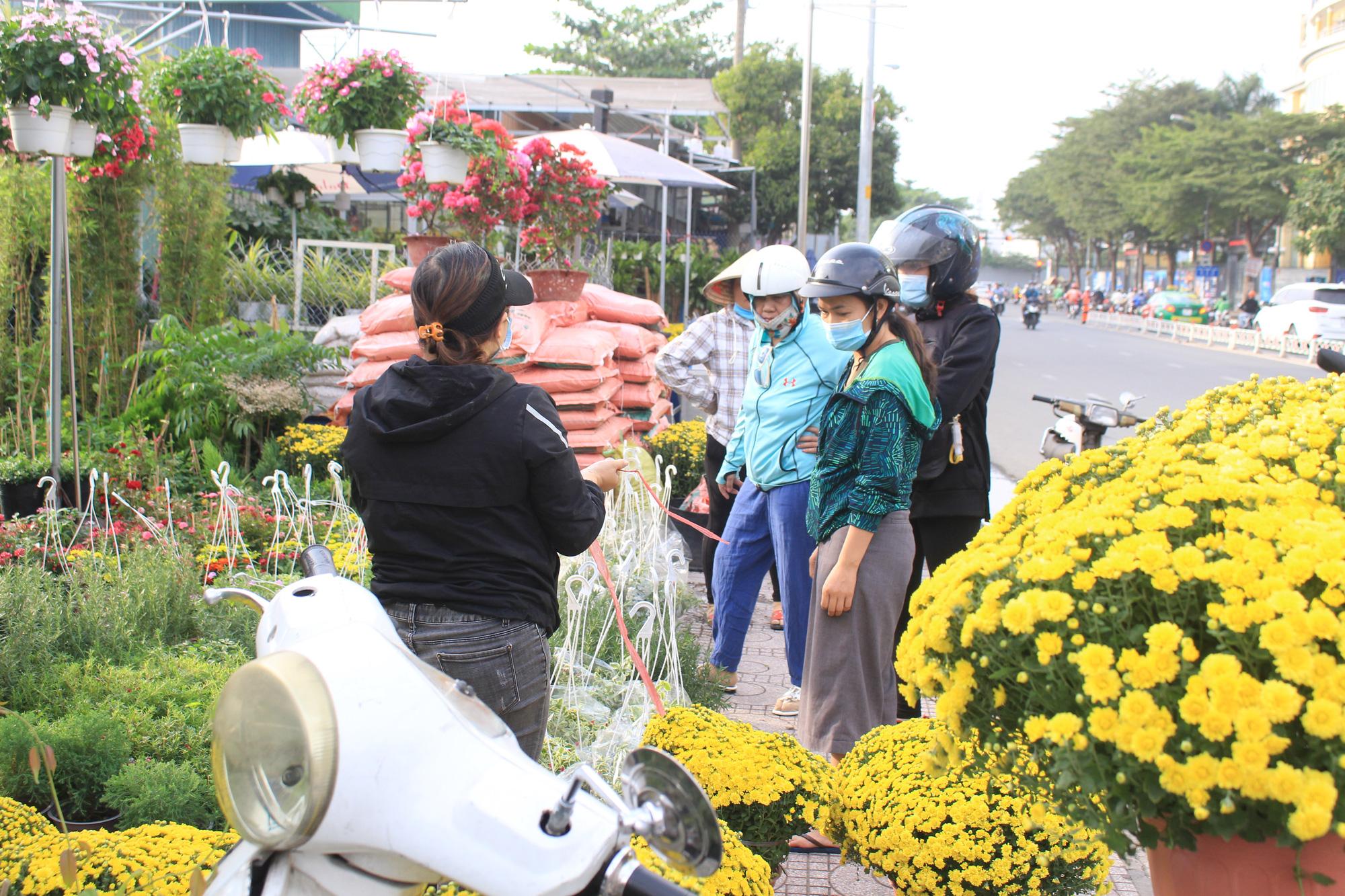 Hoa kiểng Tết đã bán tại Sài Gòn, tranh thủ giá rẻ, nhiều người đi mua sớm - Ảnh 1.