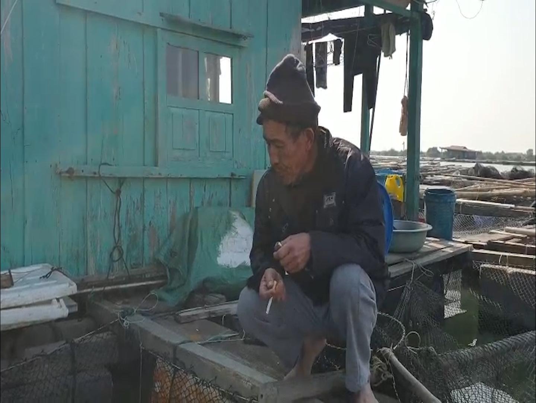 Cá song, cá giò chết nổi trắng mặt nước cả chục tấn, nông dân Quảng Yên lo mất Tết - Ảnh 4.