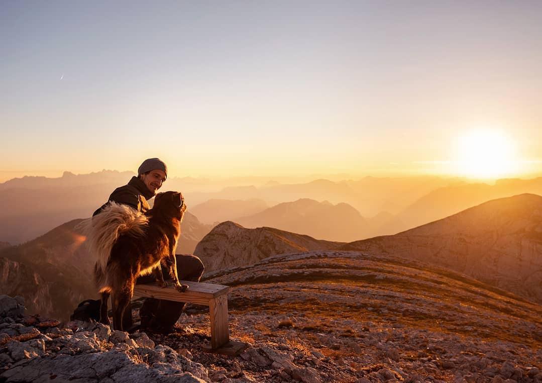 Hai con chó đi du lịch khắp châu Âu - Ảnh 2.