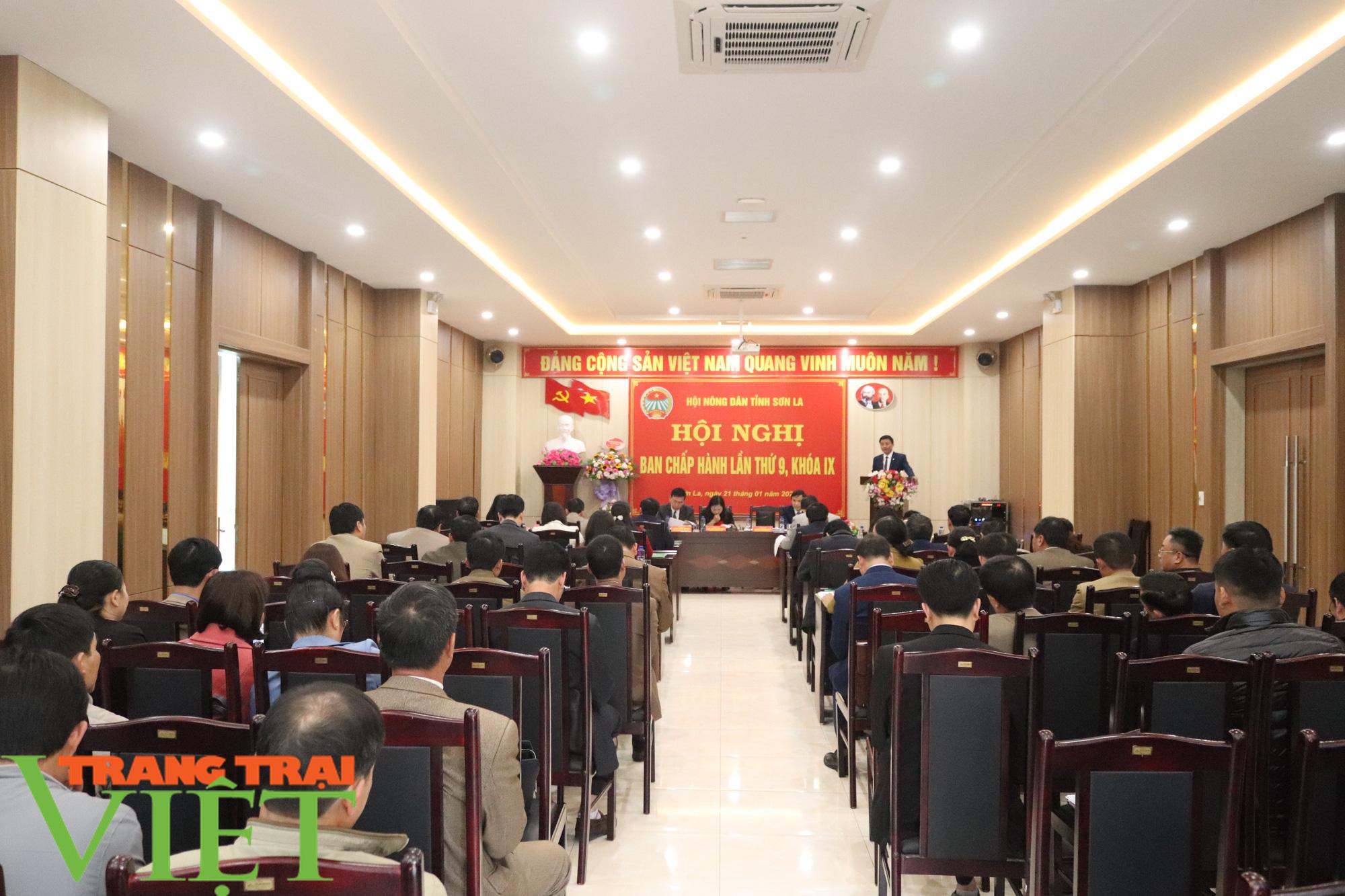 HND Sơn La: Nhiều giải pháp thực hiện công tác hội và phong trào nông dân  - Ảnh 1.