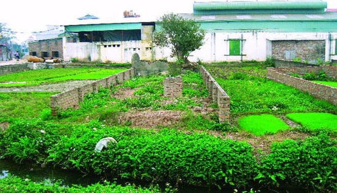 Chuyển đất vườn lên đất ở năm 2021 mất bao nhiêu tiền? - Ảnh 1.