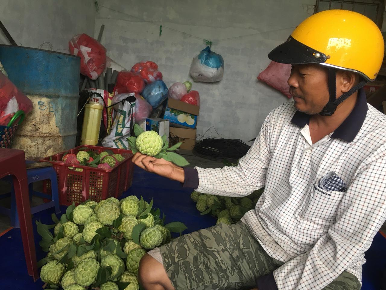 Nông dân Khánh Hòa mạnh dạn đầu tư vốn để chuyển đổi cây trồng - Ảnh 1.