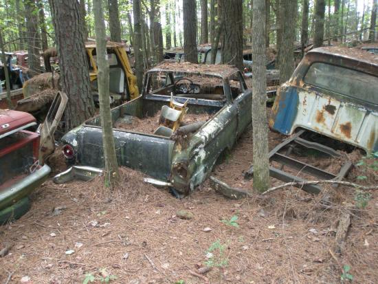 """""""Nghĩa địa"""" của những chiếc ô tô cũ lớn nhất nước Mỹ - Ảnh 3."""
