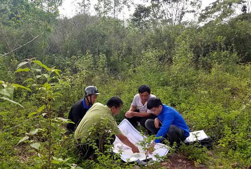 Phát huy vai trò nòng cốt trong công tác quản lý, bảo vệ rừng - Ảnh 4.