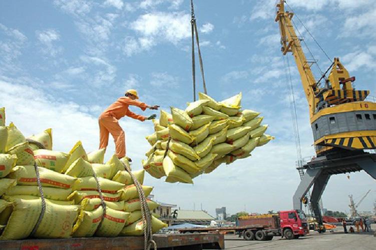 205 thương nhân đủ điều kiện kinh doanh xuất khẩu gạo - Ảnh 1.