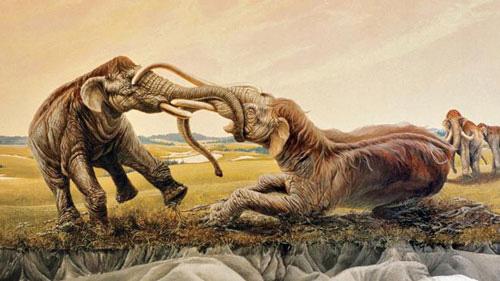 why mammoths die