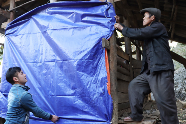Chủ động phòng, chống đói rét cho đàn gia súc, Hà Giang giảm thiểu tối đa thiệt hại - Ảnh 1.