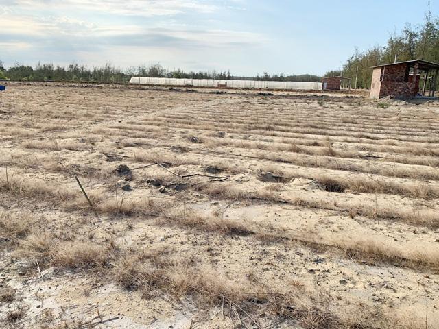 Quảng Ngãi: Điểm mặt những dự án đầu tư nông nghiệp hụt hơi nữa chừng  - Ảnh 2.