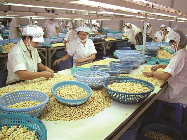 Sở hữu Hạt điều là sản phẩm mới bán chạy nhất trên Amazon, Lafooco kinh doanh thế nào? - Ảnh 1.