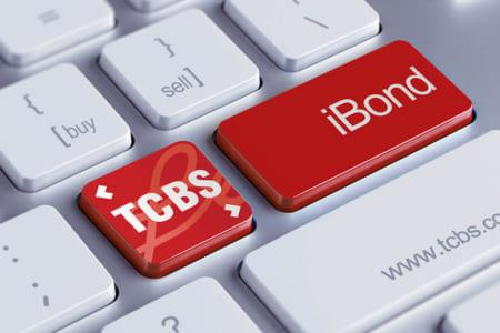 Không phải SSI, VPS hay Mirae Asset, Techcom Securities mới là Angle của ngành chứng khoán - Ảnh 1.