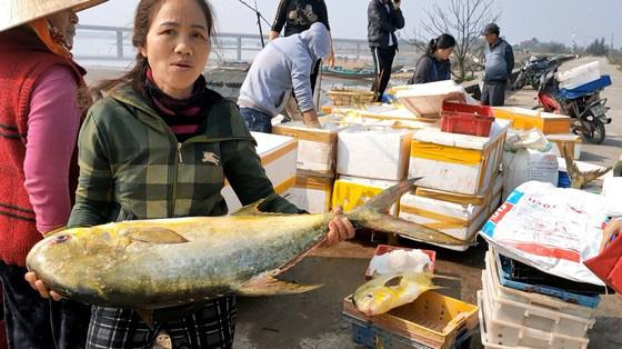 """Hà Tĩnh: Phát hiện luồng cá to bự, toàn thân như """"dát vàng"""", bắt lên được 2 tấn thu về hơn nửa tỷ - Ảnh 5."""