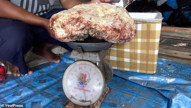 """Vô tình nhặt được hòn đá nghi long diên hương nặng 7 kg, ngư dân trẻ vớ bẫm được cả """"kho báu"""" tiền tỷ - Ảnh 4."""