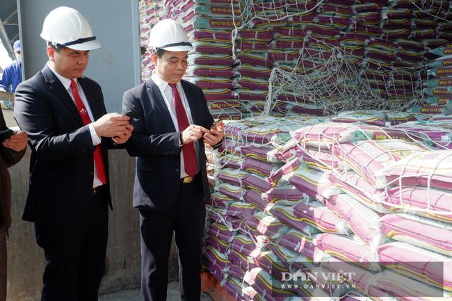 """Lâm Thao """"vượt bão"""",  thu 2.384 tỷ đồng - Ảnh 1."""