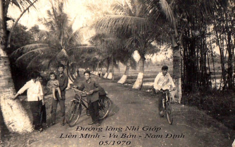 Kể chuyện làng: Đường dừa thương nhớ - Ảnh 1.