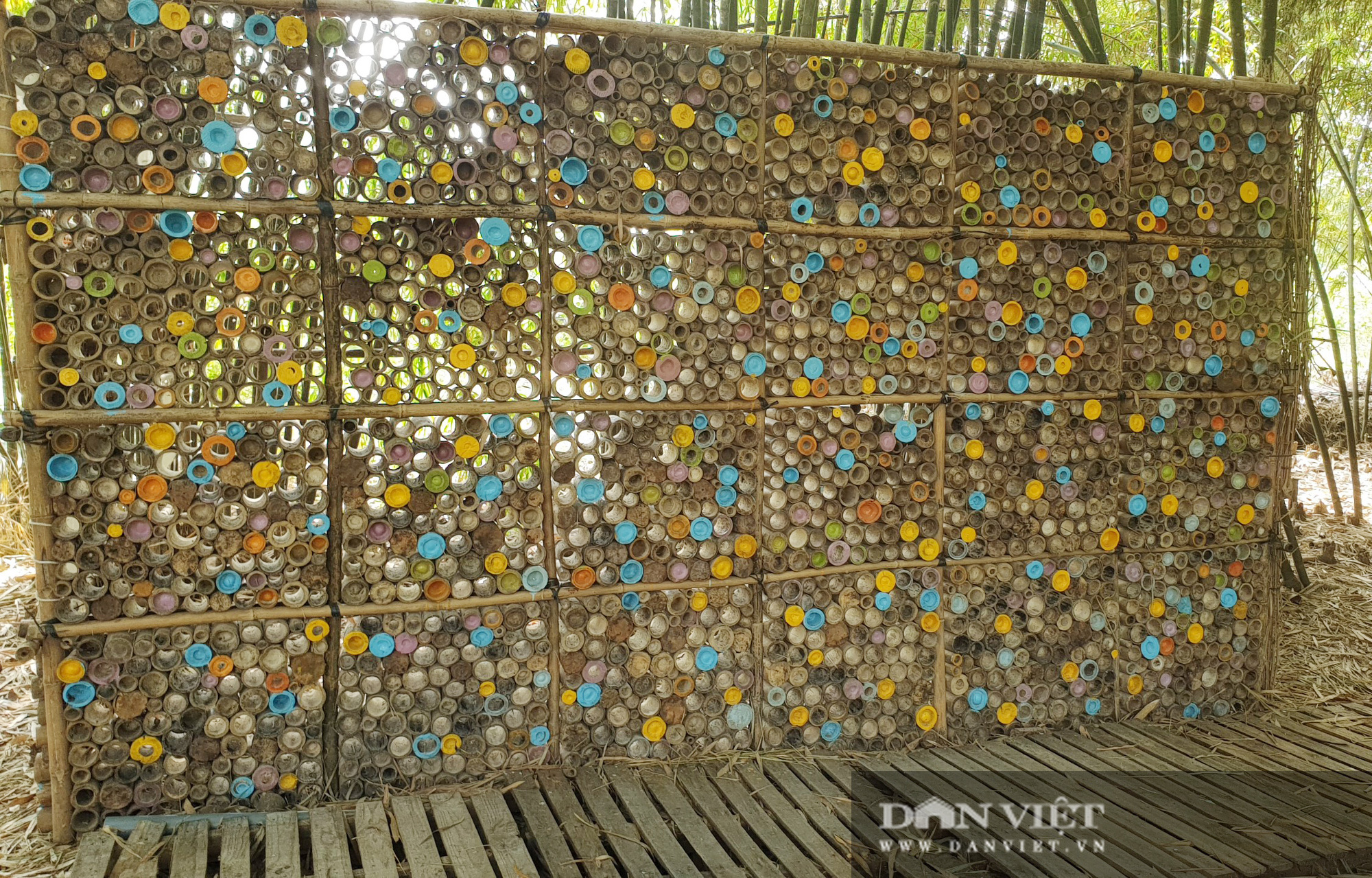 Khám phá vườn tre đẹp nhất miền Tây có tuổi đời 30 năm  - Ảnh 6.