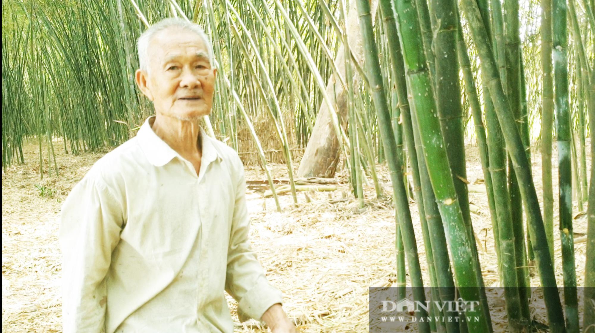 Khám phá vườn tre đẹp nhất miền Tây của lão nông 85 tuổi - Ảnh 9.