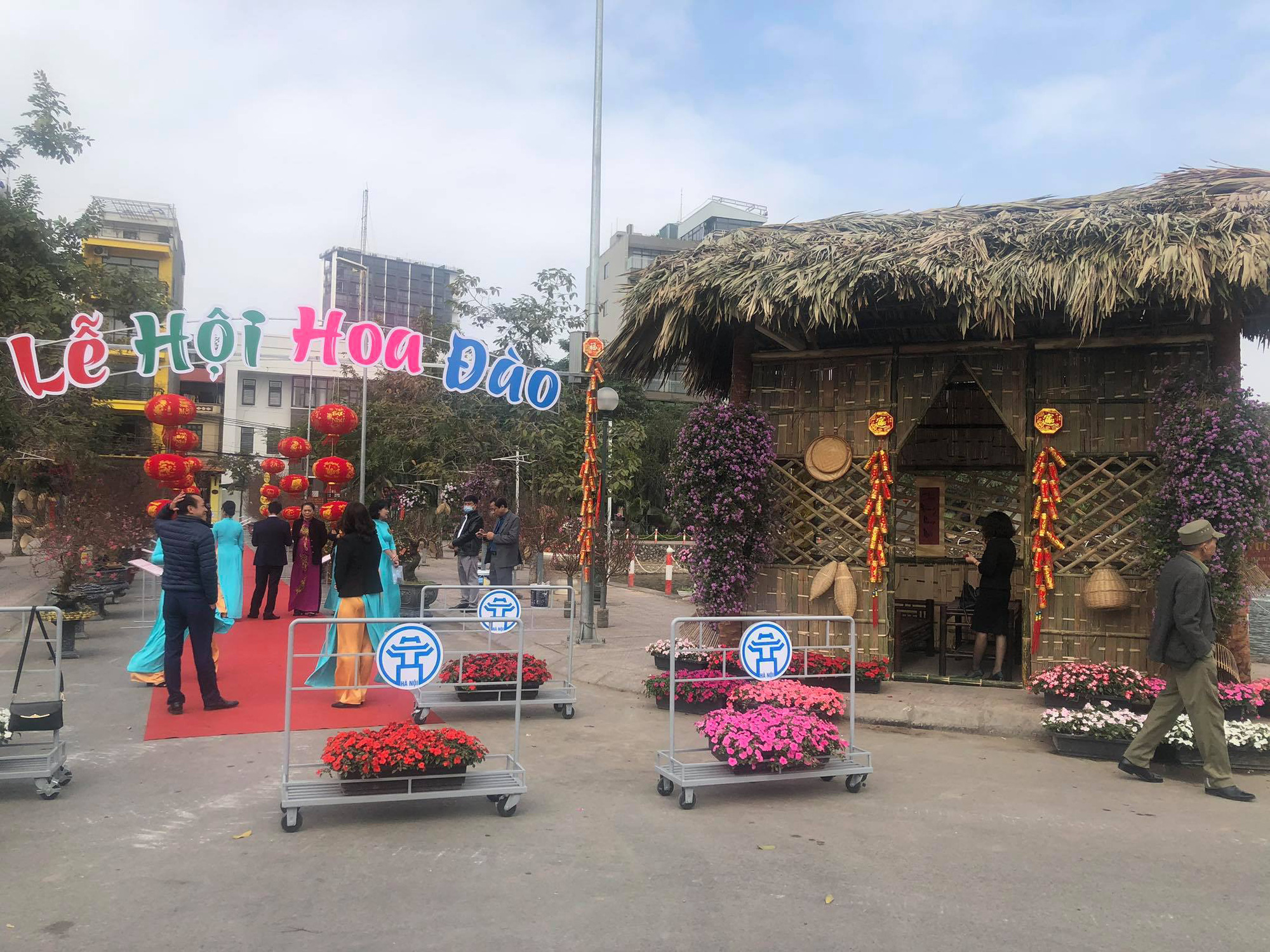 Trưng bày Đào độc, lạ trị giá 50 triệu đồng tại Lễ hội hoa đào Nhật Tân - Ảnh 1.