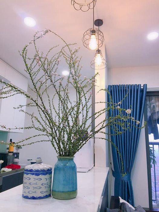Bỏ túi ngay cách cắm hoa tuyết mai trang trí nhà cửa dịp Tết - Ảnh 4.