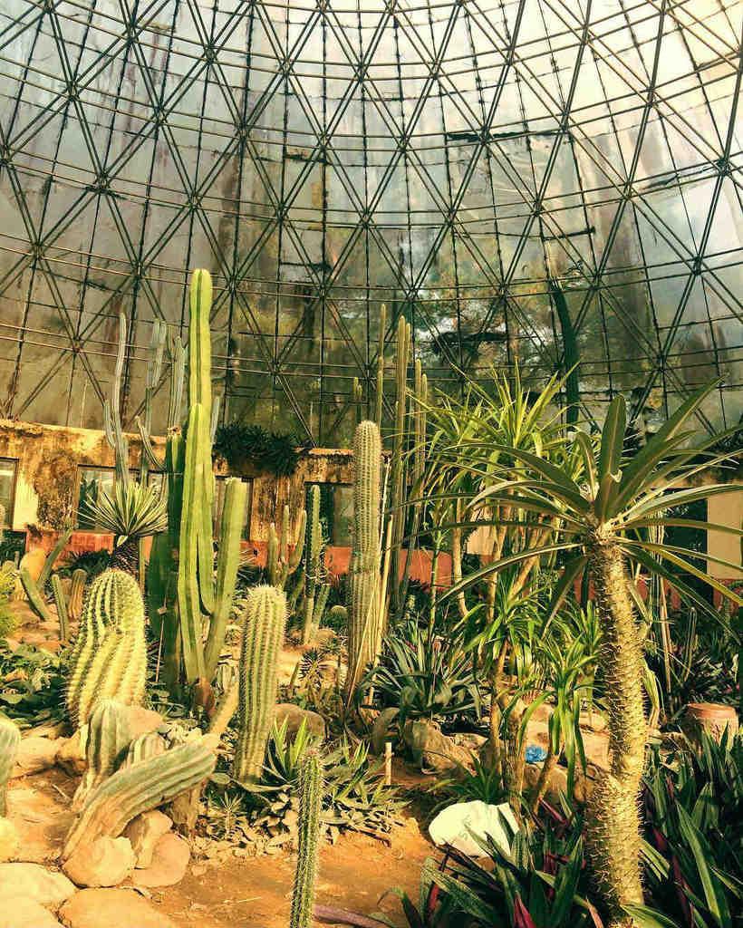 Du lịch Tam Đảo – Ba Vì và những bí ẩn chưa khám phá hết