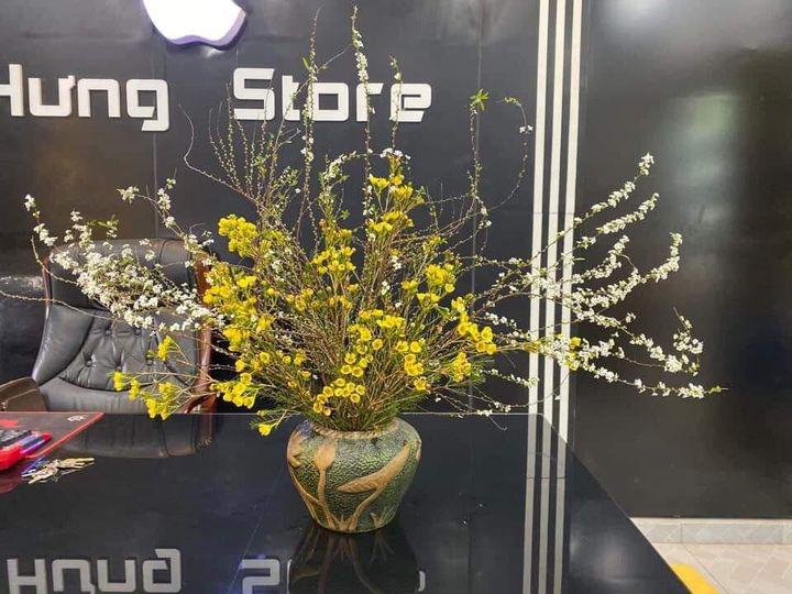 Bỏ túi ngay cách cắm hoa tuyết mai trang trí nhà cửa dịp Tết - Ảnh 7.