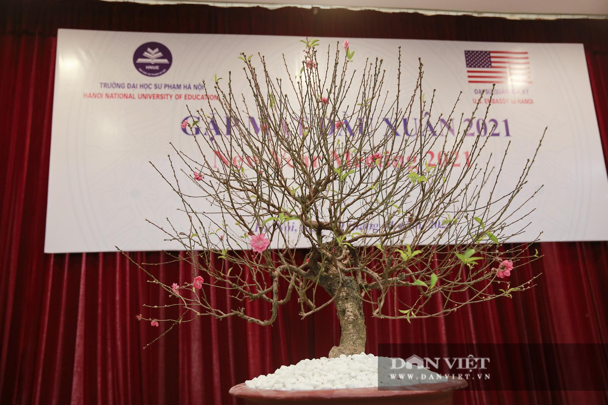 """Đại sứ Hoa Kỳ trao tặng cây đào đặc biệt tại nơi đào tạo ra những """"người lái đò"""" - Ảnh 4."""