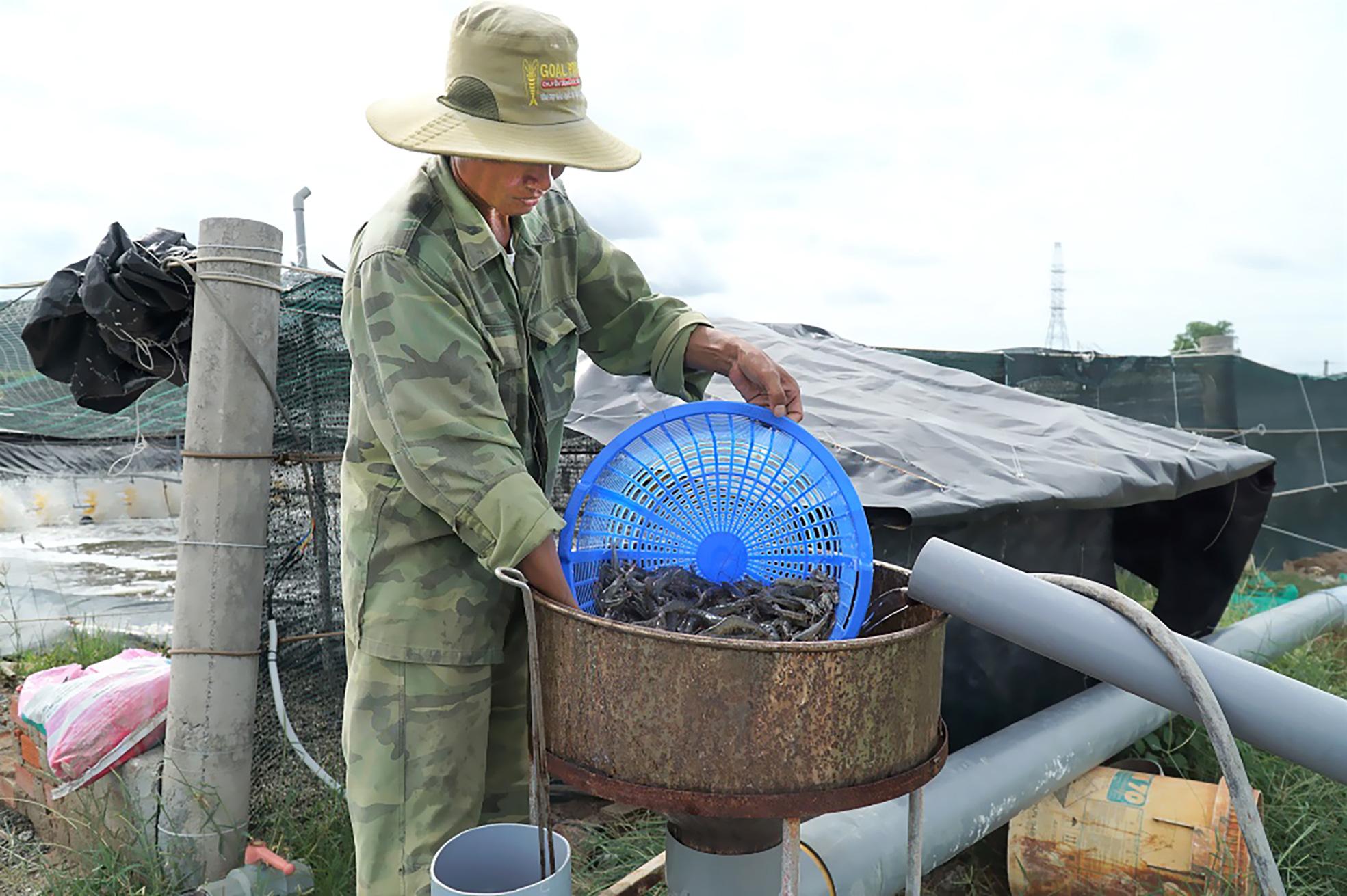 """Tỉnh Bà Rịa-Vũng Tàu: Nông nghiệp """"cất cánh"""" nhờ ứng dụng nông nghiệp công nghệ cao - Ảnh 2."""