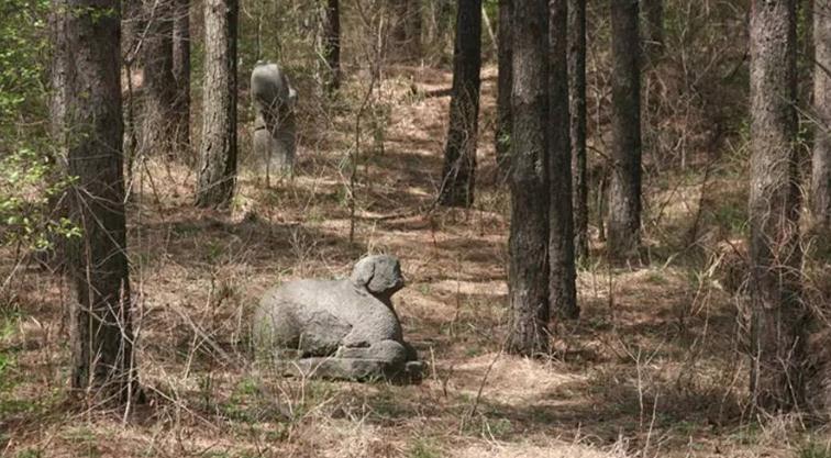"""Phát hiện mới nhất gây """"sững sờ"""" thế giới về khu rừng cổ bí ẩn với những ngôi mộ hiện đại - Ảnh 1."""