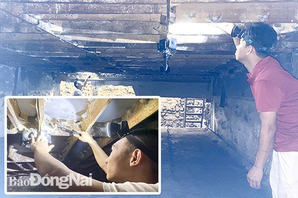 """Đồng Nai: Hé lộ về ngôi làng miền núi dân xây nhà nuôi """"chim tiền tỷ"""", ông nông dân tên Tỷ thu 200kg tổ yến - Ảnh 1."""
