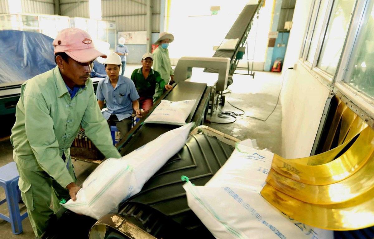 Philippines, châu Phi ký hợp đồng, xuất khẩu gạo năm 2021 vẫn lạc quan - Ảnh 1.