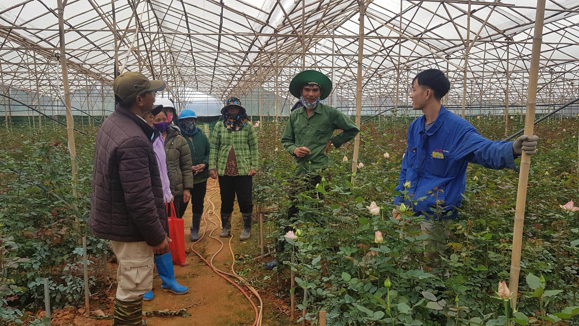 Vụ dân cho thuê đất 3 năm không đòi được tiền: Tỉnh Lâm Đồng chỉ đạo xử lý - Ảnh 5.