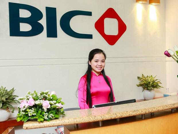 Tổng hợp báo cáo tài chính Tổng công ty cổ phần Bảo hiểm BIDV (BIC)