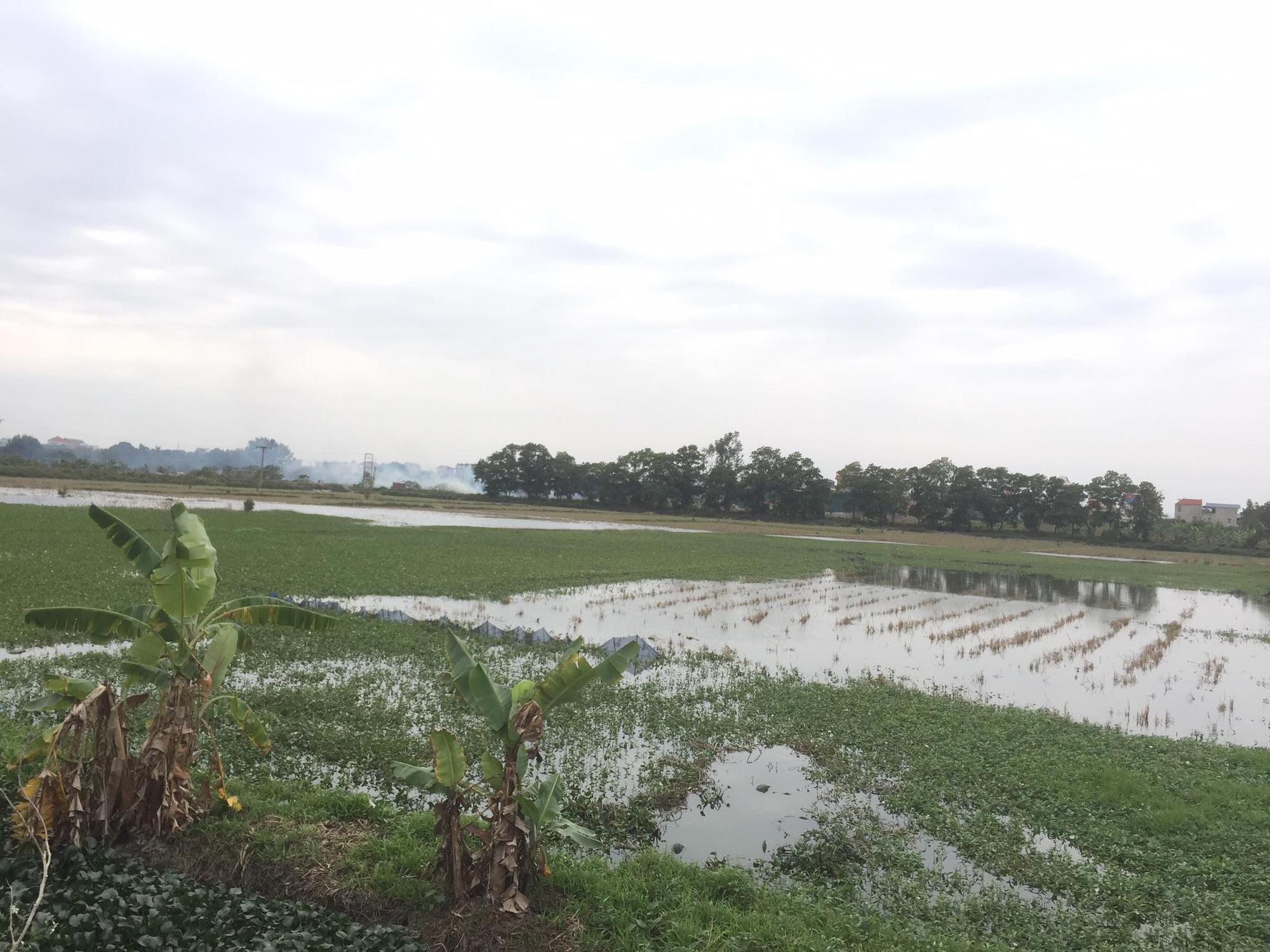 Bất cập trong việc Hà Nội điều chỉnh đối tượng giao đất tại dự án Thanh Hà - Ảnh 4.