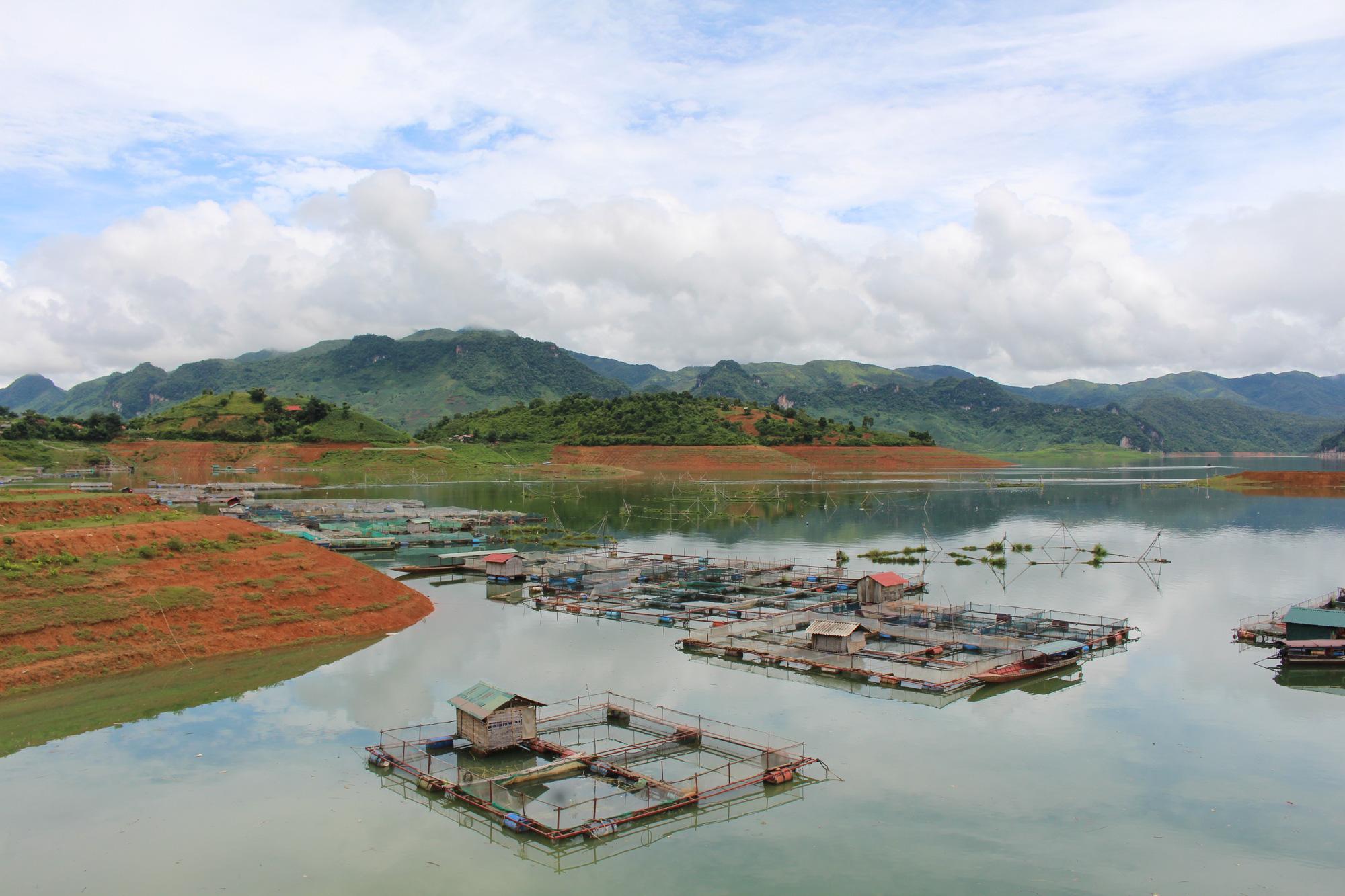 Sơn La phấn đấu trở thành trung tâm sản xuất giống, nuôi trồng thủy sản lớn nhất vùng Tây Bắc - Ảnh 2.
