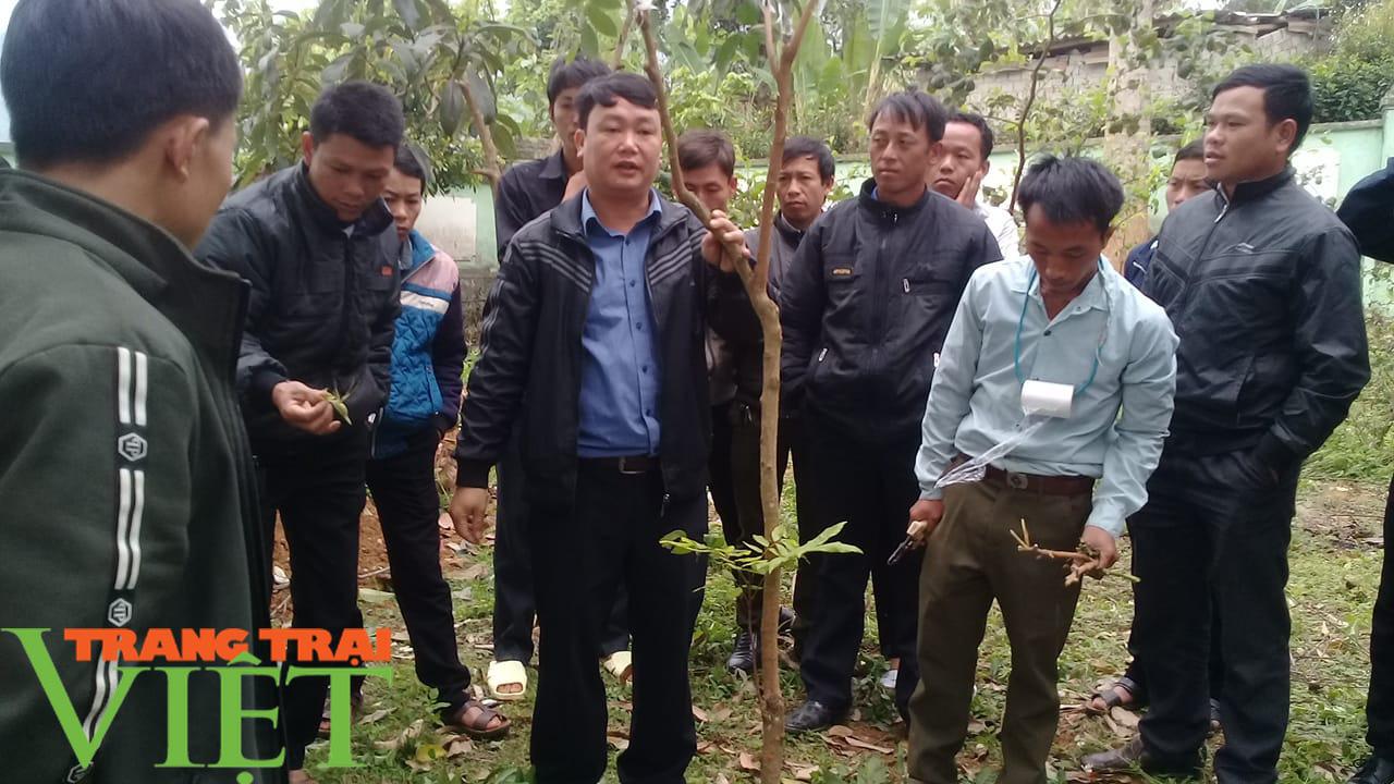 Nông dân Thuận Châu thi đua sản xuất, kinh doanh giỏi - Ảnh 4.